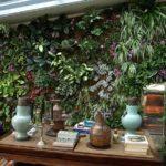 Mur Végétal Occitanie : la Nature s'Invite Chez Vous