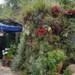 Mur Végétal Occitanie : Des Modules de Fraîcheurs