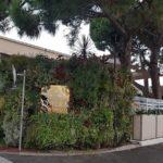 Mur Végétal Occitanie : un Concepteur de Confiance Innovant